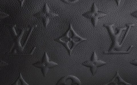 Louis Vuitton Bag Pic 4